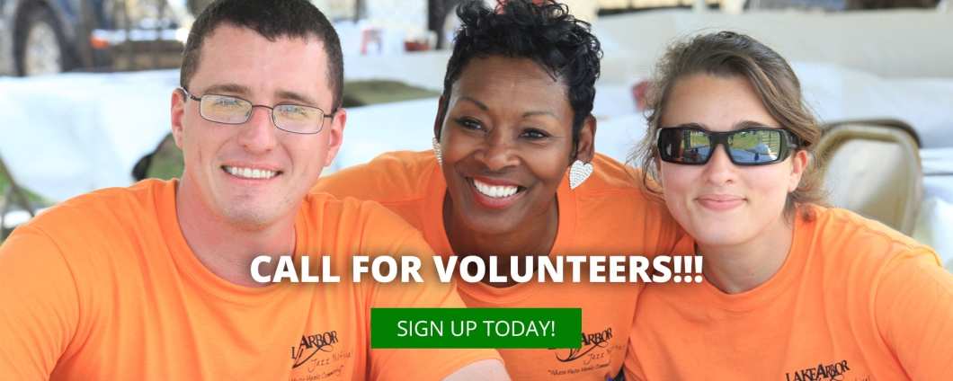 slider-2016-volunteers